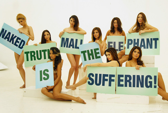 Models Strip For Mali the Elephant Shoot